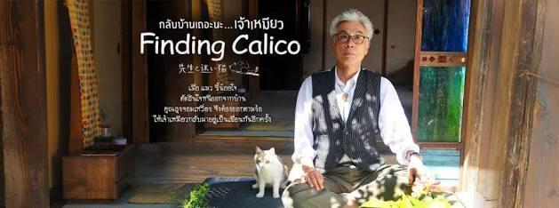 Finding Calio :: สักวันเราจะจากกัน, ไม่จากเป็นก็จากตาย ::