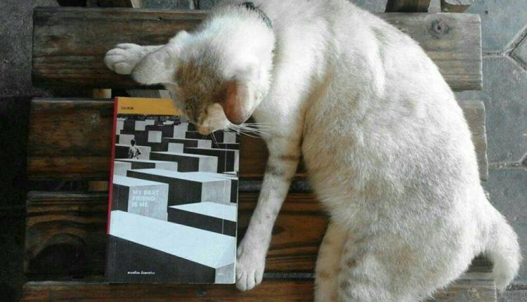 My best friend is me ::หนังสือที่อ่านแล้วเหงา