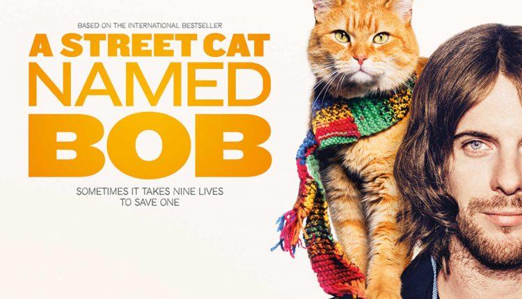 A street cat named Bob หนังที่คนรักแมวต้องตกหลุมรัก